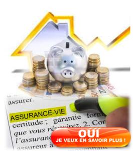 Assurance-vie et Immobilier en Alsace