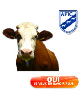 Investissement en Vaches et Cheptel en Alsace