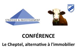 Stratégie & Investissement Conférence 26 mai